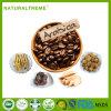 2017 de Hete Koffie van de Mens van Lingzhi van Nieuwe Producten Sterke