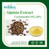 工場供給のプラントエキスのAlpiniaのエキスP.E 98% /Alpinia P.E. Cardamonin