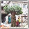 Grande árvore artificial personalizada do Ficus para a decoração