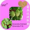 Het zuivere Poeder van het Sap van het Poeder van het Uittreksel van het Fruit Graviola