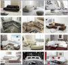 U oder L Form-echtes Leder-Sofa für Agens (AG004)