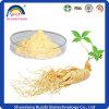 Het Chinese Uittreksel van de Ginsengen van Kruiden met 80% Panaxoside