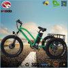 助手席が付いているアルミ合金のバイクのTrikeの電気三輪車