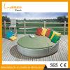 Rotin en osier Sunbed de salon de jardin de meubles de présidence extérieure populaire de piscine