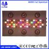LED는 빛에 의하여 진행된 스펙트럼을 증가한다 정원 온실과 Hydroponic 물을%s 가벼운 Hydroponic 실내 플랜트 성장하고 있는 빛 거는 빛을 증가한다
