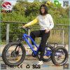 24 bicis eléctricas /Tricycle /Trike de Catgo de las ruedas gordas del neumático 3 de la pulgada con los frenos de disco