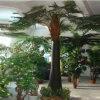 Planta artificial grande de los bonsais de la decoración de la falsificación de la palmera