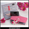 Consideravelmente no jogo de ferramenta cosmético da escova cor-de-rosa do pó da escova do olho (JDK-PS9016)