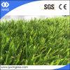 Dorn-Form, die künstliches Rasen-Gras landschaftlich verschönert