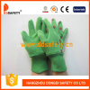 Зеленые перчатки сада хлопка. Задняя часть Coccinella печатание (DGB214)