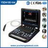 Veterinärfarbe Dopler Ultraschall-Maschine (YSD4100-Vet)