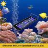 Aquarium sans fil 108W du coucher du soleil DEL de lever de soleil