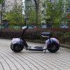 Vespa eléctrica de la vespa 800W Citycoco del neumático Citycoco/Seev/Woqu de Jinyi 18*9.5 (JY-005)