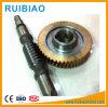 Engranaje sinfín y rueda utilizados para la construcción de elevación de caja de cambios