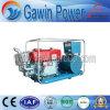 10kw GF1 scelgono - il gruppo elettrogeno diesel di serie raffreddata ad acqua del cilindro