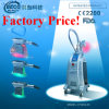3 manija Cryolipolysis Beauty Machine para Weight Loss Etg50-3s