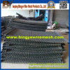 Stainless unito Steel Wire Mesh per Filter