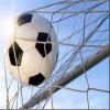 Knotless сеть цели футбола/Knotless сеть футбола