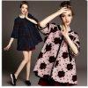 Пальто 2014 повелительниц нового способа вскользь. Платье женщин