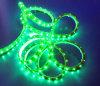 Tira de la luz del LED (MJ-3528gg-60)
