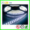 DC24V High Power 120LEDs/M 5050 LED Rope Light