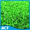 Het synthetische Gras van Sporten, het Kunstmatige Gazon van het Gras (SF10W6)