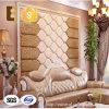 El panel de pared casero respetuoso del medio ambiente del PVC de la decoración de Morden