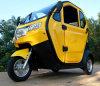El coche eléctrico de la rueda del adulto 3/cerró el tipo triciclo para el pasajero