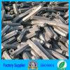 [بّق] خشب صلد نشارة خشب فحم نباتيّ درجة نوعية