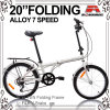 20 Inch Folding Bicycle (WL-2034A)