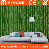 Papier peint de forêt avec la bâche de mur en bambou verte