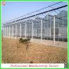 Estufas hidropónicas da folha ambiental do policarbonato com sistema refrigerando