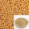 大豆のイソフラボン40%