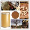 Het beste Anti-oxyderend Supplement/Uittreksel van het Fruit van de Baobab
