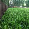 O relvado sintético do hóquei do gramado ostenta a grama