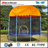 Enclosureとの熱いTrampoline 10ft Trampoline