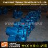 Bomba de água do motor elétrico de Yonjou (ISG)