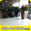 Planteur rectangulaire d'acier inoxydable pour le jardin ou le bureau