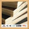 Rood/Triplex Black/Brown Film Onder ogen gezien Plywood/Shuttering Plywood/Marine