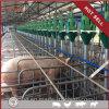 Пер свиньи низкой цены оборудования клетки свиньи