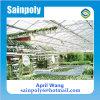 Easillyは農業のためのガラス温室をインストールした