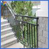 Cerca al aire libre de las escaleras del hierro de la alta calidad profesional del surtidor de China