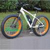 26  جبل إطار العجلة سمينة كهربائيّة درّاجة وسط درّاجة مع [ليثيوم بتّري]