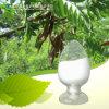 Sophoricoside/SophoraのJaponicaのエキス