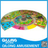 Nuovo Design per Indoor Playground in Large Size (QL-1125H)