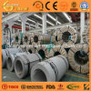 Sale caliente 304L Stainless Steel Coil/Roll