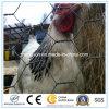 Galvanizado / PVC decorativo hexagonal malla de alambre de pollo para la venta