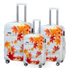 100% PC Luggage Set voor Travel (PCL001-C20  24  28 )