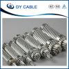 Alta qualidade todos os condutores de alumínio AAC para linhas da distribuição