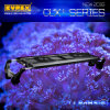 Chinesischer intelligenter Sonnenuntergang Zoll/90cm/108W und Sonnenaufgang der Produkt-35 CREE Marine-LED Aquarium-Licht